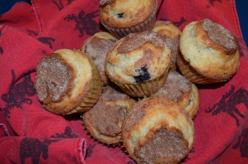 HJO Blueberry muffins